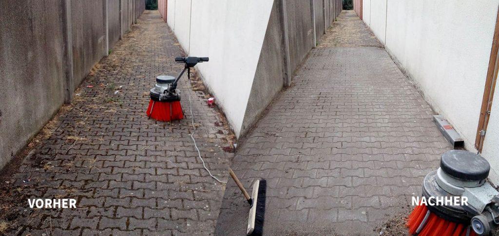 Unkrautvernichtung ohne Chemie Trio GmbH Gebäudereinigung Krefeld